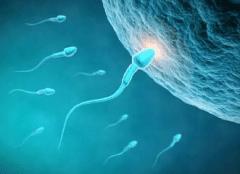 精子发黄什么原因?